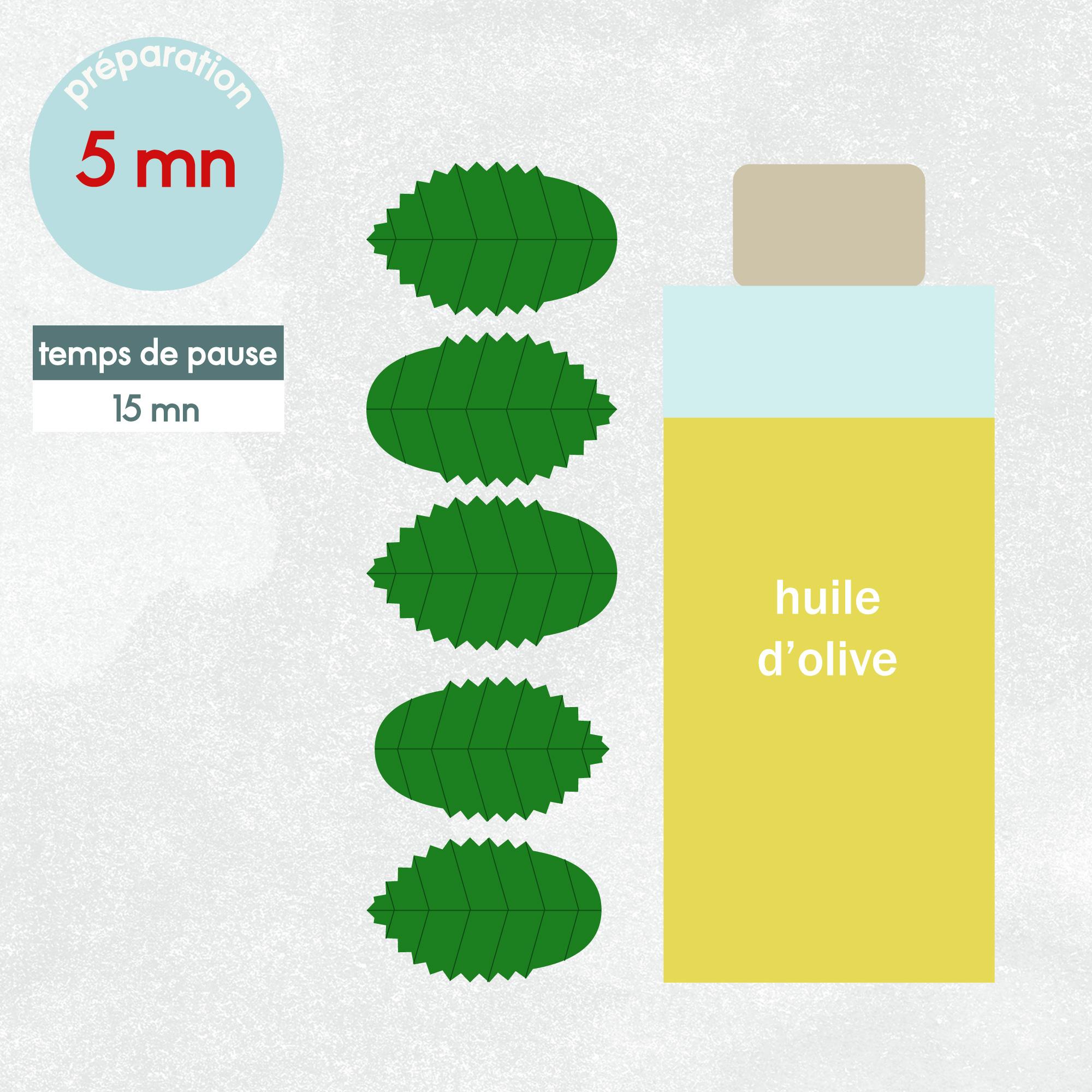 Huile cheveux maison ma recette anti pelliculaire for Antipelliculaire maison