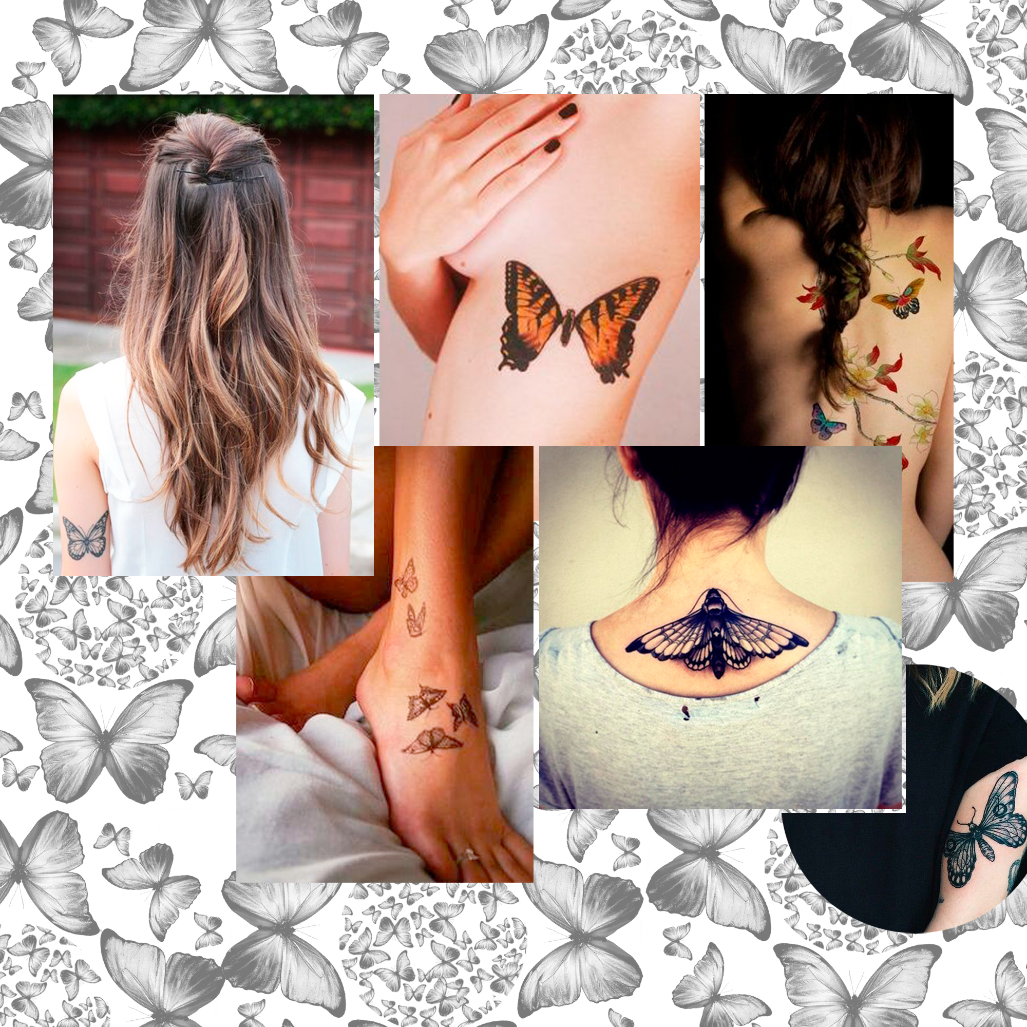 tatouage papillon les plus jolis mod les de tatouages. Black Bedroom Furniture Sets. Home Design Ideas