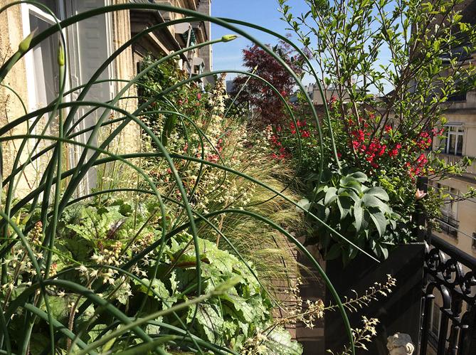 L 39 actu du jour des jardiniers et paysagistes v lo elle d coration - Deco jardin velo paris ...