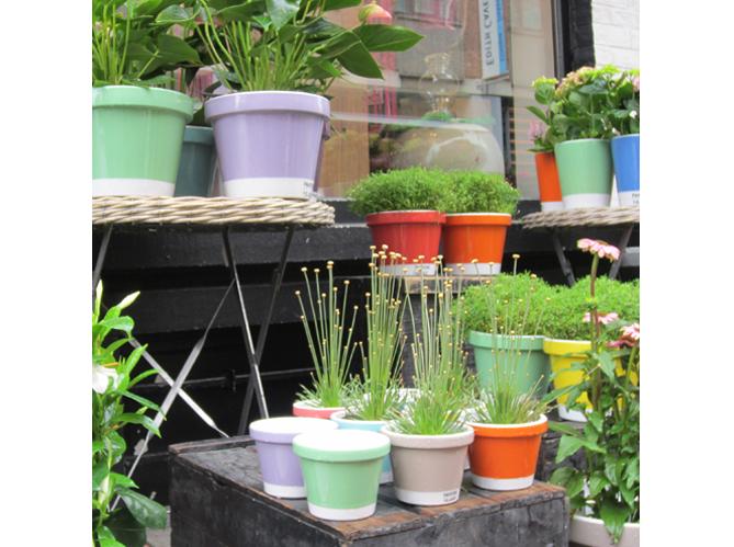 Pots et jardini res habillent la terrasse et le jardin for Pot exterieur couleur