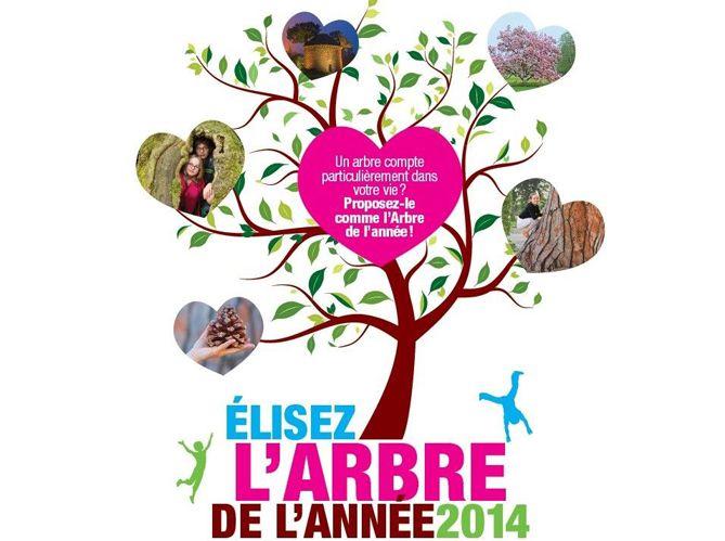 Proposez votre candidat pour l arbre de l ann e 2014 for Arbre artificiel exterieur ikea