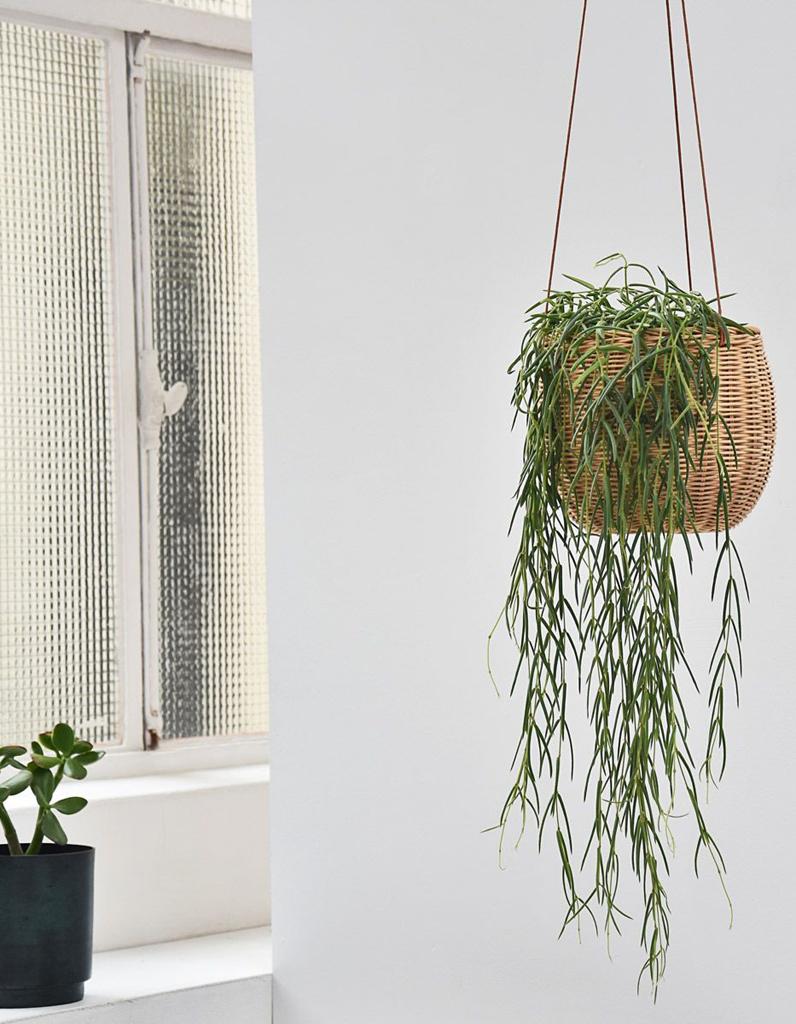 mettez en valeur vos plantes gr ce au pot suspendu elle. Black Bedroom Furniture Sets. Home Design Ideas