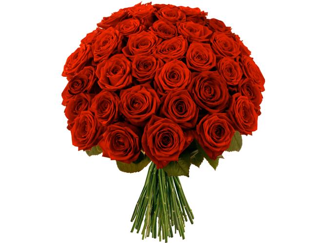 Les fran ais et les fleurs d couvrez vos habitudes elle for Les fleur