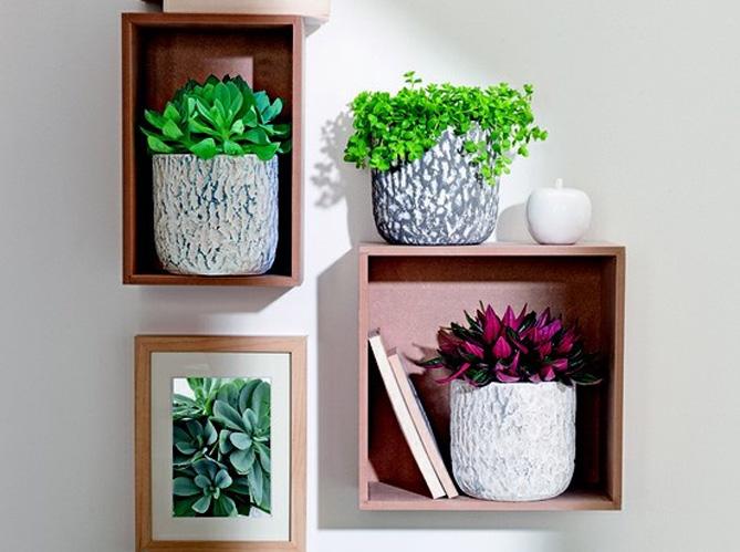 Donnez des airs de jardin votre int rieur elle for Plantes d interieur decoration