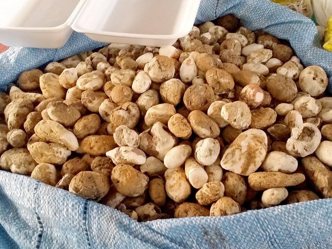 Incident de conservation sur pdt - Conservation pommes de terre cuites ...
