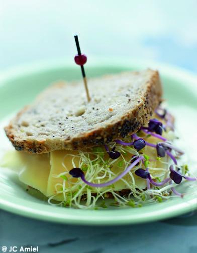 Sandwich hollandais pour 4 personnes recettes elle table - C est au programme recettes de cuisine ...