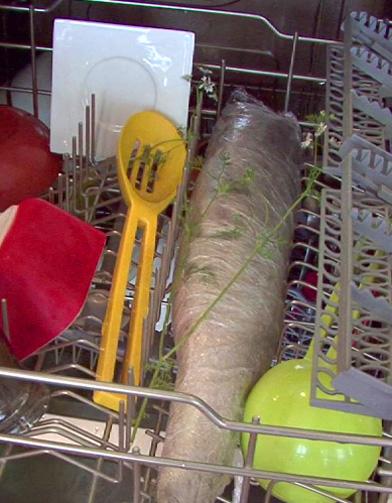 Et si on cuisait le saumon au lave vaisselle elle table - Cuisiner au lave vaisselle ...