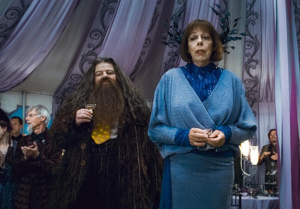 Harry potter une nuit dans la cabane d hagrid a vous for Dans harry potter