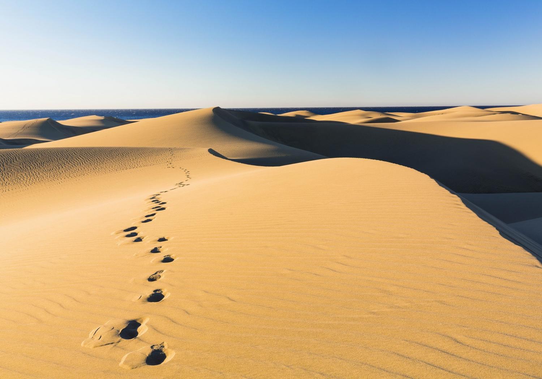 Dunes de maspalomas grande canarie espagne 11 - 5 1