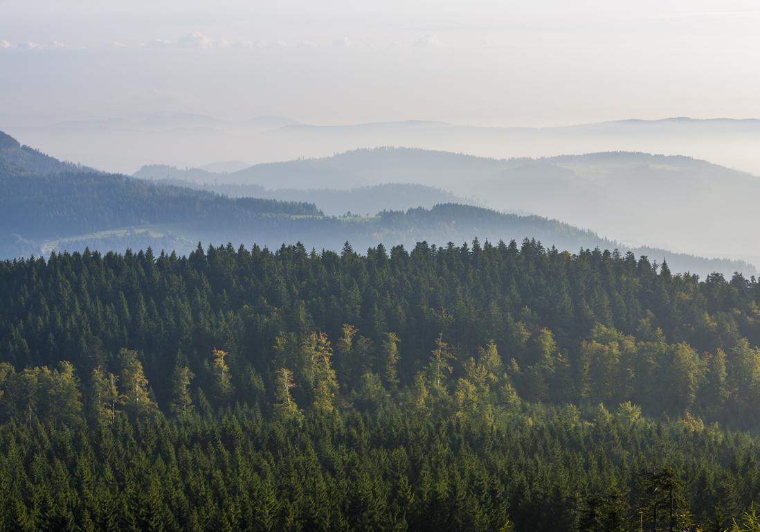 Favori La Forêt Noire, en Allemagne - Road-trip en couple : 10 spots où  KY42